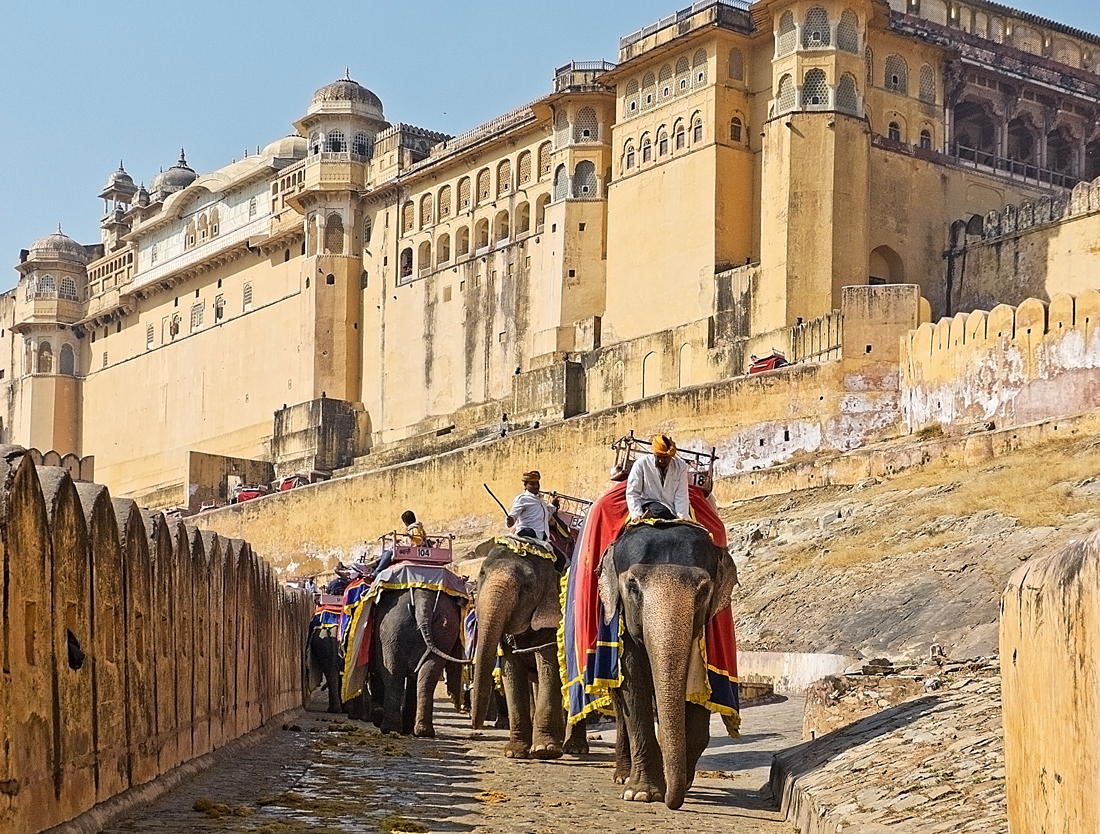 Elephants Garbage And The Glory Of The Amber Fort