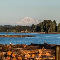 Homing In On Home