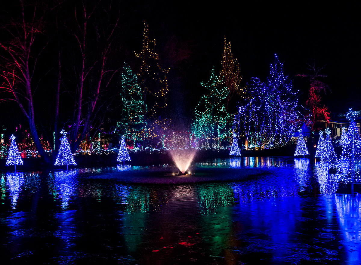One million christmas lights christmas season at vandusen botanical every half hour music would suddenly boom out and the lights intensified by being reflected in the lake would dance in time to the beat solutioingenieria Gallery